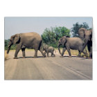 Why did the elephant cross the road? (2) card
