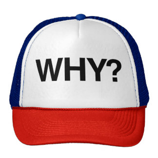 WHY? Fun Trucker Snap Back Hat