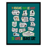 Why it's Lucky to Love a Black Cat Poster