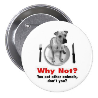 Why Not? Buttons