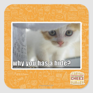 Why you has a hide? square sticker