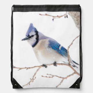 Wichita County, Texas. Blue Jay5 Drawstring Bag