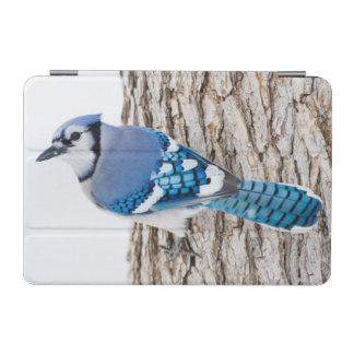 Wichita County, Texas. Blue Jay 4 iPad Mini Cover