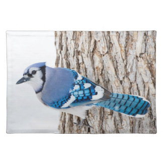 Wichita County, Texas. Blue Jay 4 Placemat