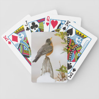 Wichita Falls, Texas. American Robin Bicycle Playing Cards