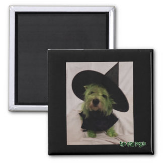 Wicked Witch of the Westie Square Magnet