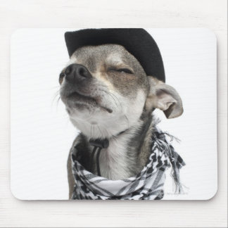 Wide-angle of a Chihuahua with his eyes closed Mouse Pad