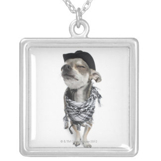 Wide-angle of a Chihuahua with his eyes closed Silver Plated Necklace