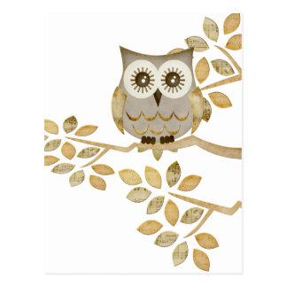 Wide Eyes Owl in Tree Post Card