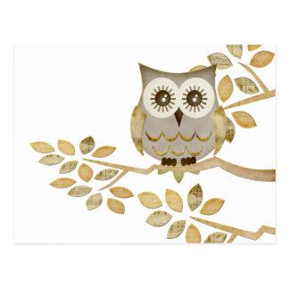 Wide Eyes Owl in Tree Post Cards