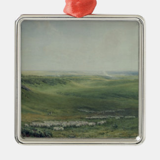 Wide Pastures, Sussex Silver-Colored Square Decoration