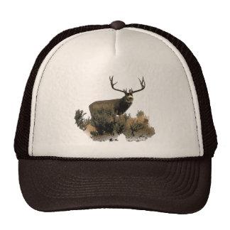 Wide rack buck trucker hat