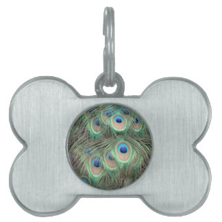 Wide Spreed Of Peacock Eyes Pet Tag