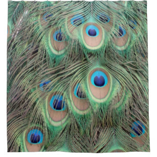 Wide Spreed Of Peacock Eyes Shower Curtain