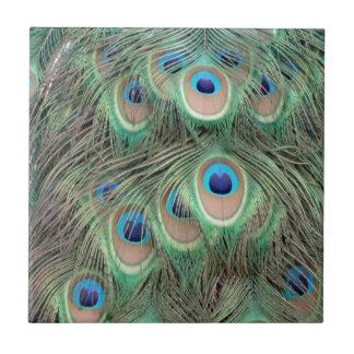 Wide Spreed Of Peacock Eyes Tile