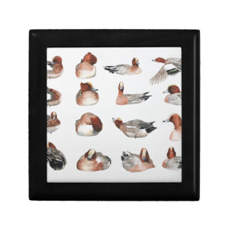 Widgeon. Waterfowl duck gift Keepsake Boxes