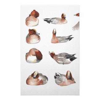 Widgeon. Waterfowl duck gift Stationery