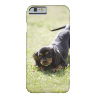 Wiener dog (black) 2 barely there iPhone 6 case