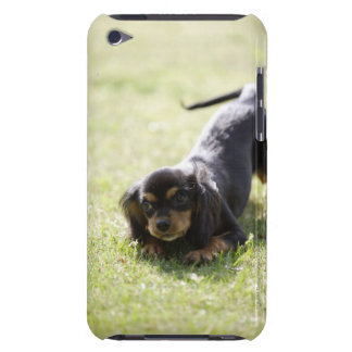 Wiener dog (black) barely there iPod covers