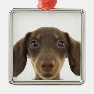 Wiener Dog (brown) 2 Christmas Ornament