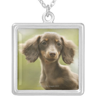 Wiener Dog (brown) Silver Plated Necklace