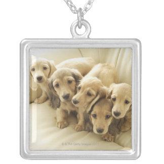Wiener puppies square pendant necklace