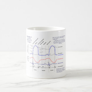 Wiggers Diagram Coffee Mug