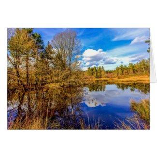 Wigpool Pond Card