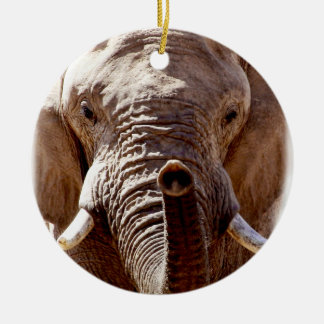 Wild Africa Elephant Head Round Ceramic Decoration