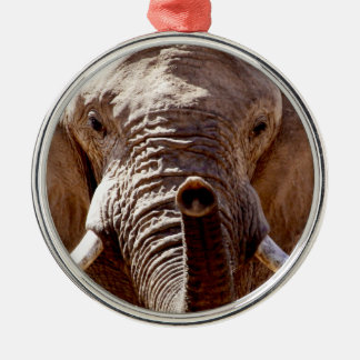 Wild Africa Elephant Head Silver-Colored Round Decoration
