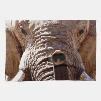 Wild Africa Elephant Head Tea Towel