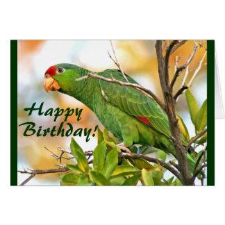 Wild Amazon Parrot Bird Wildlife Birthday Card