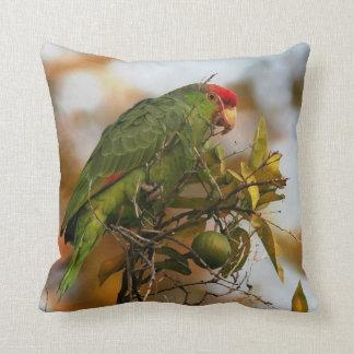 Wild Amazon Parrot Pillow