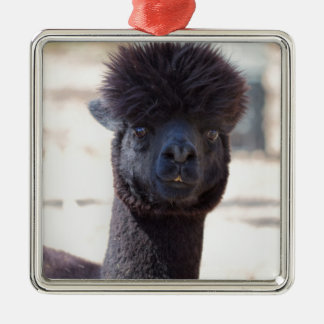 Wild and Crazy Alpaca Hair Style Christmas Tree Ornaments