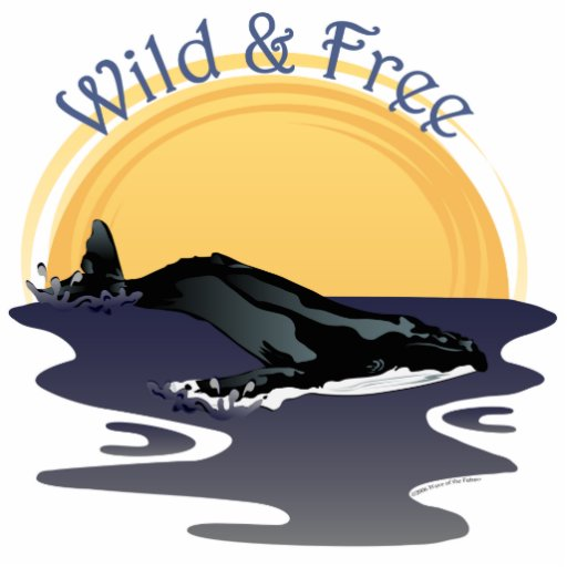 Wild and Free Acrylic Cut Out