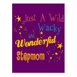 Wild and Wacky Stepmom