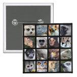 Wild Animal Faces -- Mammals, Reptiles, Birds 15 Cm Square Badge