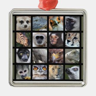 Wild Animal Faces -- Mammals, Reptiles, Birds Square Metal Christmas Ornament