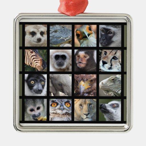 Wild Animal Faces -- Mammals, Reptiles, Birds Ornament