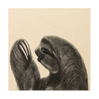 Wild Animal Rainforest South American Sloth Sketch Wood Wall Art