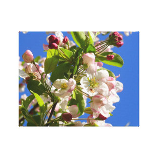 Wild Apple Tree Canvas Print