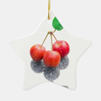 Wild Apples Ceramic Star Decoration