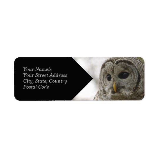 Wild Barred Owl Face Avery Return Address Label