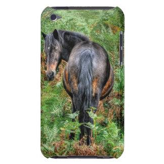 Wild Bay New Forest Pony & Bracken - England iPod Touch Case