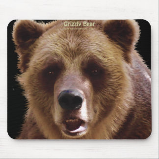 Wild Bear Animal-lovers Wildlife Gift Mouse Pad