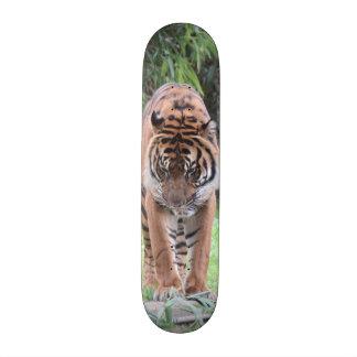 WILD! Bengal Tiger Skateboard
