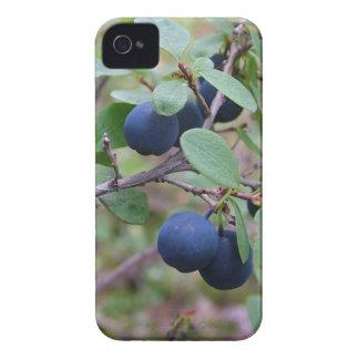 Wild Berries iPhone 4 Case-Mate