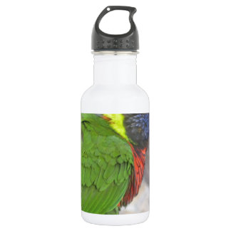 Wild Bird 532 Ml Water Bottle