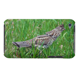 Wild Bird for Bird-lovers Barely There iPod Case