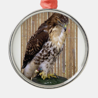 Wild Birds: Red-Tailed Hawk Christmas Ornament